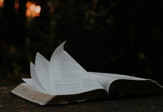 otwarta księga